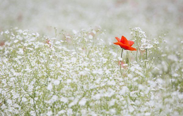 5 astuces pour perdre du poids en hiver